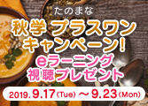 秋学プラスワンキャンペーン!