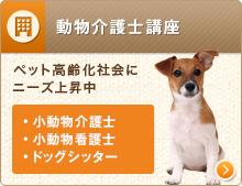 動物介護士講座